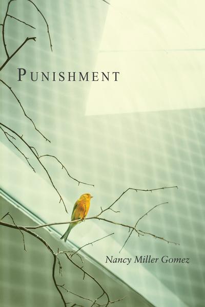 Punishment by Nancy Miller Gomez