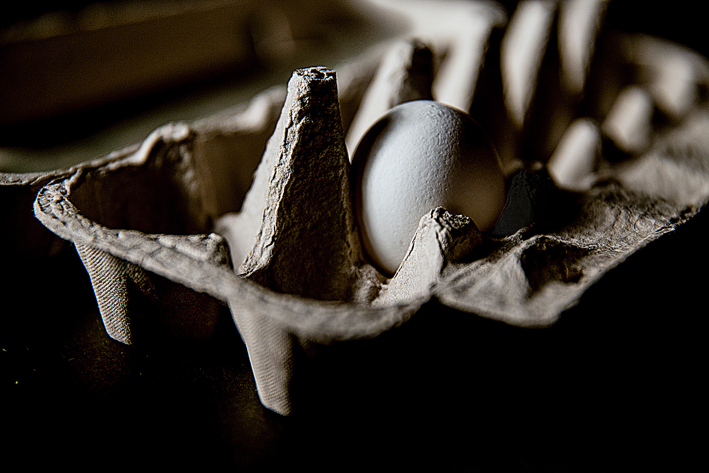 Untitled by Kari Gunter-Seymour, one egg in a carton