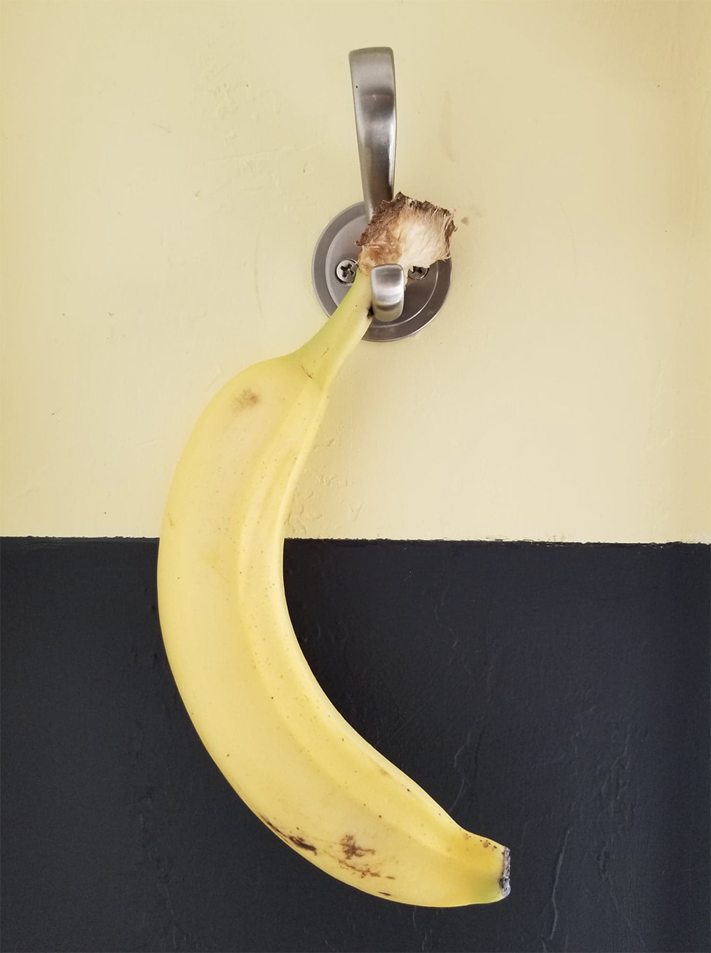 photograph of a banana hanging on a hook against a yellow and black wall