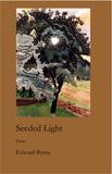 Seeded Light by Edward Byrne